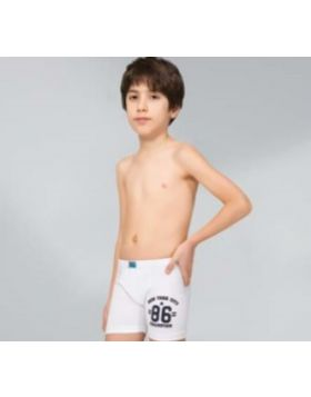 301 боксерки хлопчачі